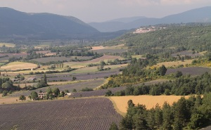 Provence scenery