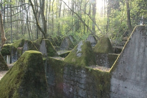 The so-called 'Dragon teeth' of the Siegfried Line at Roetgen. These concrete structures were the tank stoppers