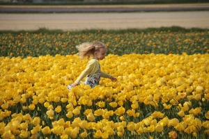 'Flower child' at Keukenhof