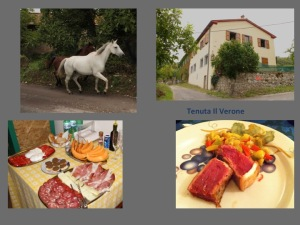 Tenuta Il Verone is a gem in the Tuscan countryside worth discovering. Book dinner!
