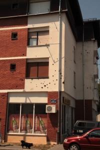 9.Bulletholes
